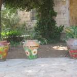 En hälsning från Vännernas skola i Ramallah
